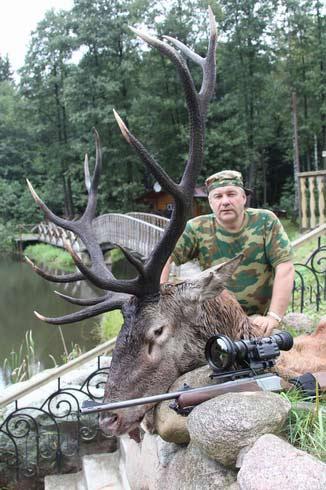Оленя в белоруссии сентябрь 2011 года