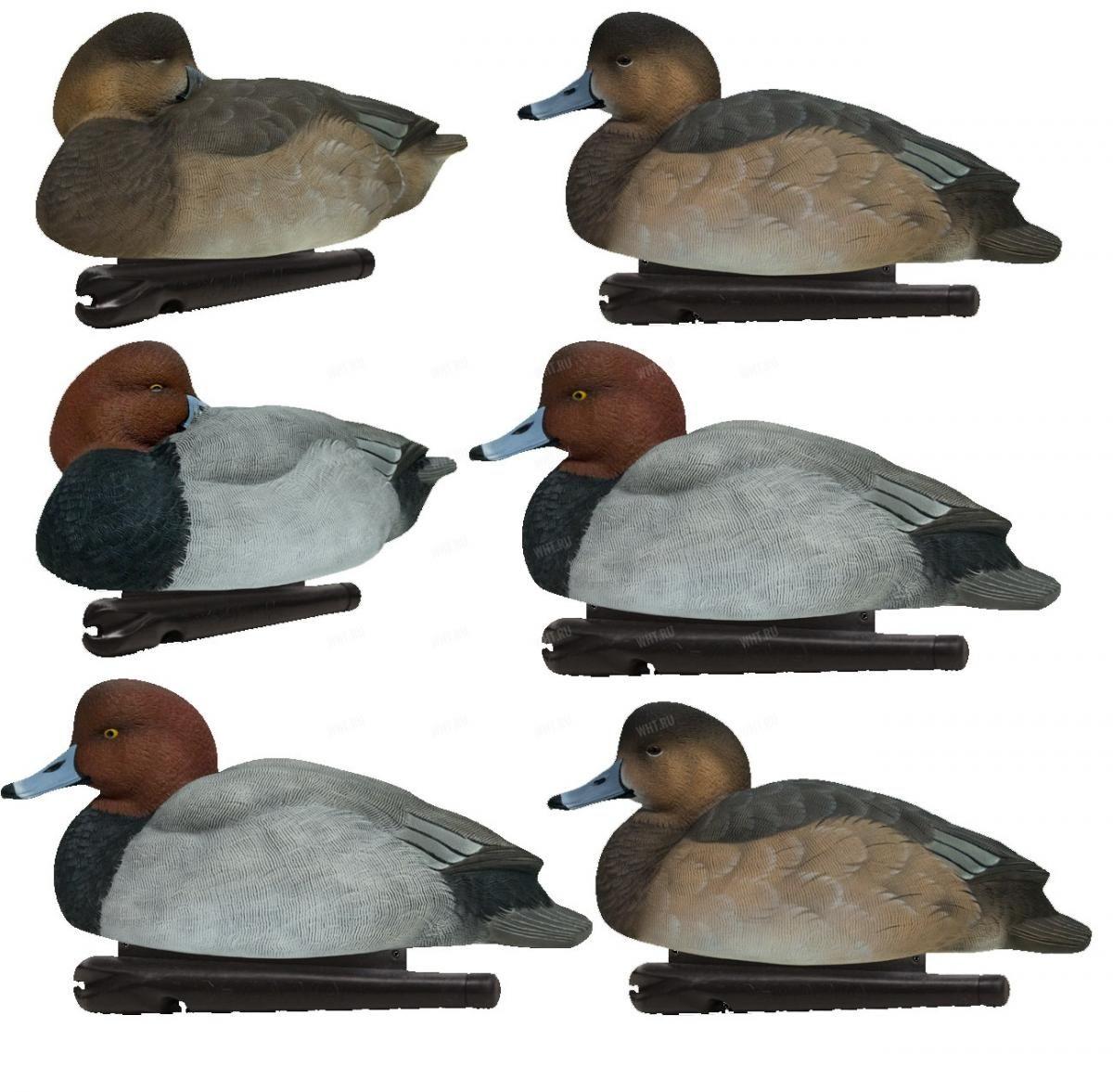Комплект полноразмерных чучел спящего красноголового нырка, Avian-X TOPFLIGHT Sleeper Pack