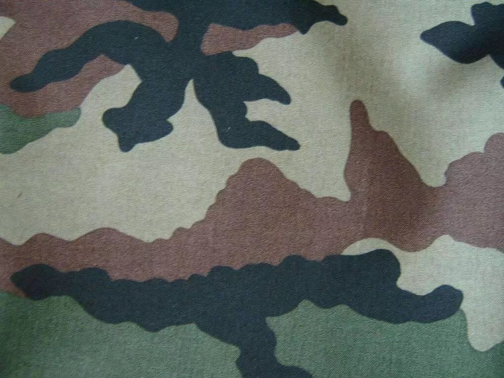 CCE camo - (Camouflage Central European)..jpg